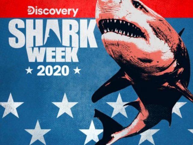 https://shaqfuradio.com/wp-content/uploads/2020/07/shark-week-logo-640x480.jpg